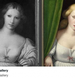 What we learned during #MuseumWeek2015